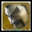Admirez le Tekken Lord !