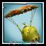 Parachute libre